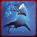 Download Angry Shark Revenge Attack 3D 1.0.3 APK