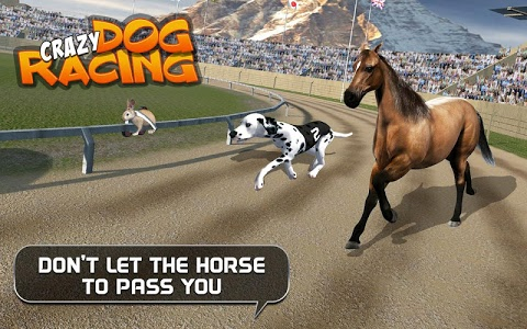 Download Crazy Dog Racing 2.4.3 APK