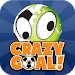 Download Crazy Goal 1.2 APK