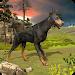 Download Dog Survival Simulator 1.0 APK