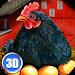 Download Euro Farm Simulator: Chicken 1.03 APK
