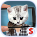 Download Face scanner: What cat 2 1.7 APK