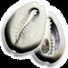 Download Jogo de Búzios 1.0 APK