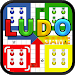 Download Ludo Game 3.4.11 APK