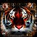 Download Neon Tiger Keyboard Theme 10001003 APK