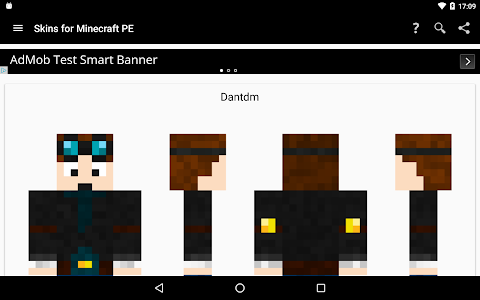 screenshot of Skins for Minecraft PE version 11.2