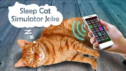 Download Sleep Cat Simulator Joke 1.9 APK