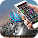 Download Sleep Cat Simulator Joke 2.1 APK