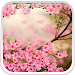 Download Spring Flowers Live Wallpaper 5.0 APK