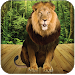 Download Talking Lion 3.6 APK