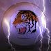Download Tiger Browser 4G 1.0 APK