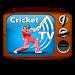 Download Vivo Live Cricket Tv FREE 1.0 APK