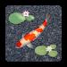 Download aniPet Koi LiveWallpaper 2.0.7 APK